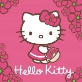 Magický ručníček Hello Kitty 30/30